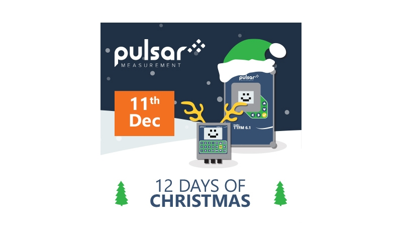 Pulsar Day 4 - 12 Days of Christmas 2020 Promotion