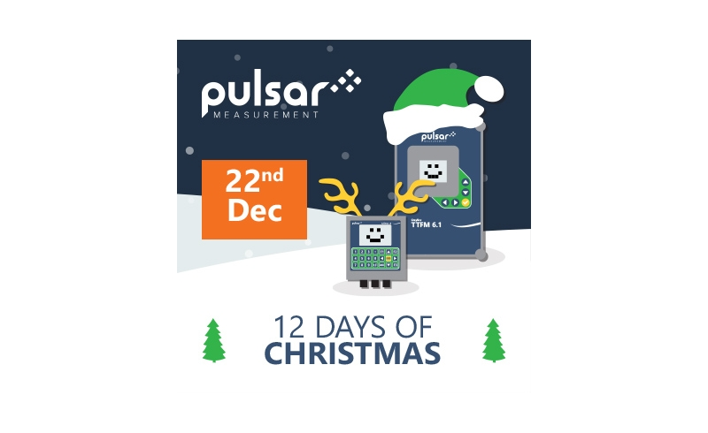 Pulsar Day 11 - 12 Days of Christmas 2020 Promotion