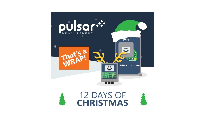 Happy Holidays from Pulsar Measurement
